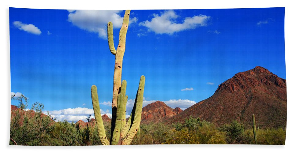 Photography Beach Towel featuring the photograph Saguaro Tree by Susanne Van Hulst