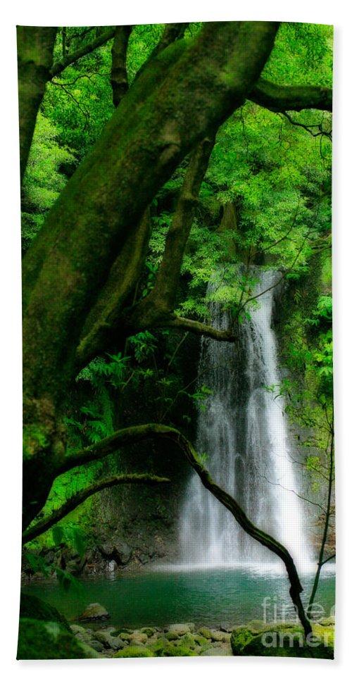 Environment Beach Sheet featuring the photograph Salto Do Prego Waterfall by Gaspar Avila