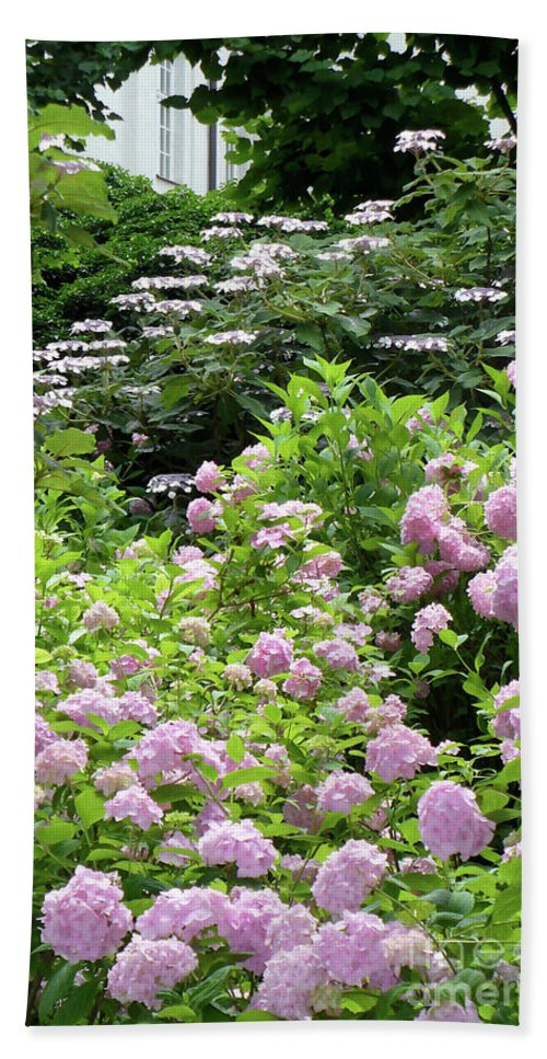 Austria Beach Towel featuring the photograph Pink Hydrangeas In Mirabell Garden by Carol Groenen