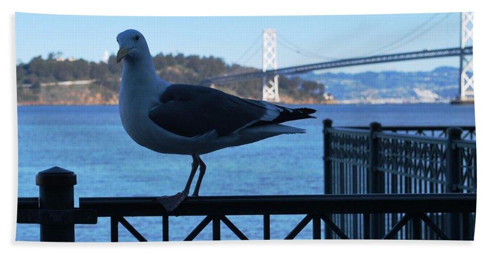 City Beach Towel featuring the photograph San Francisco - Oakland Bay Bridge - Seagull View by Matt Quest