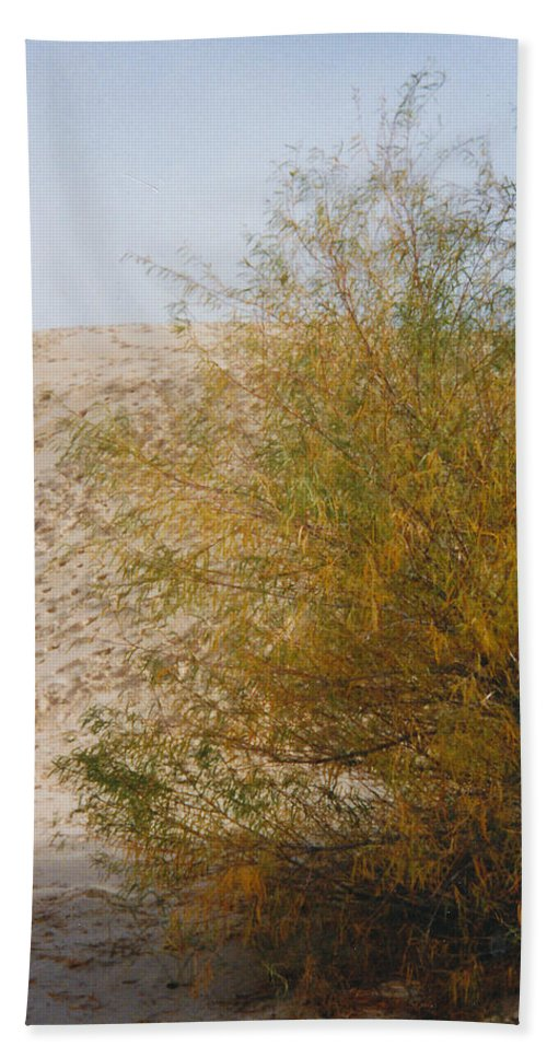 Sands Monohans Bush Trees Footprints Beach Towel featuring the photograph Sands Of Monahans - 2 by Cindy New