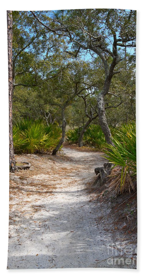 Path Beach Towel featuring the photograph Sandy Path In Hunting Island South Carolina by Louise Heusinkveld