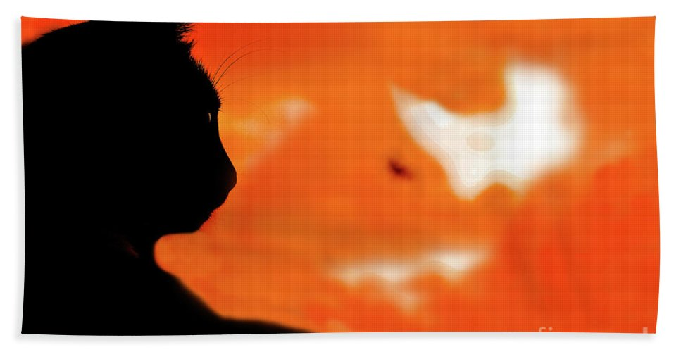 Cat Beach Towel featuring the photograph Saphira At Sunset by Kim Henderson