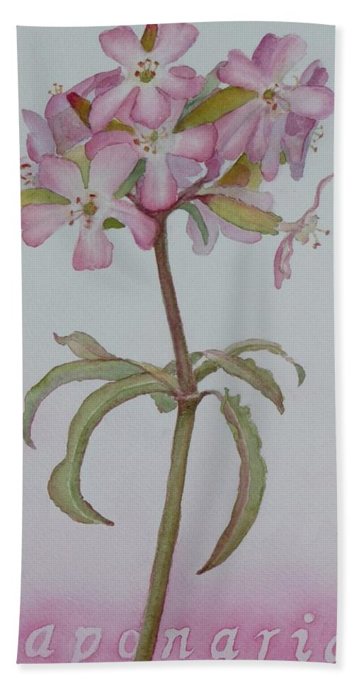 Flower Beach Towel featuring the painting Saponaria by Ruth Kamenev