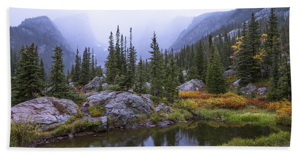 Saturated Forest Beach Towel featuring the photograph Saturated Forest by Chad Dutson