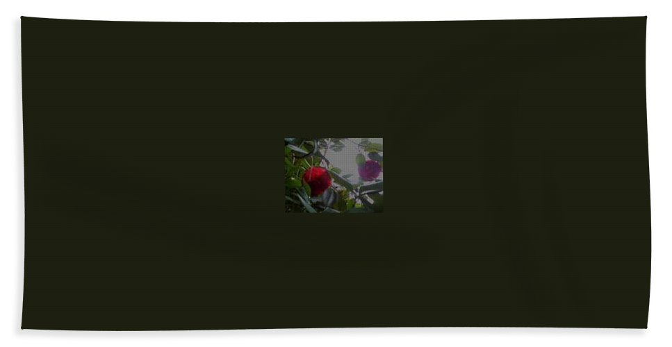 Red Chamillias Beach Towel featuring the photograph Saving Grace by R Chambers