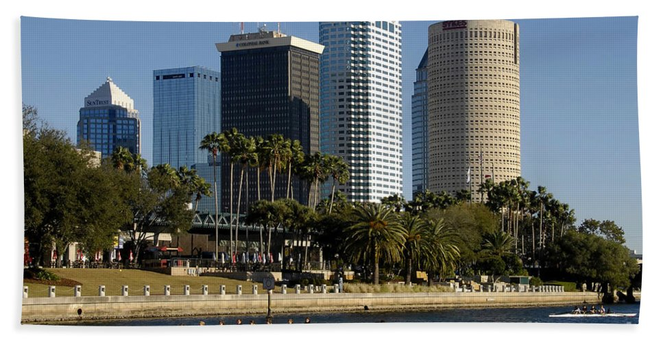 Sculling Beach Towel featuring the photograph Sculling In Tampa Bay Florida by David Lee Thompson