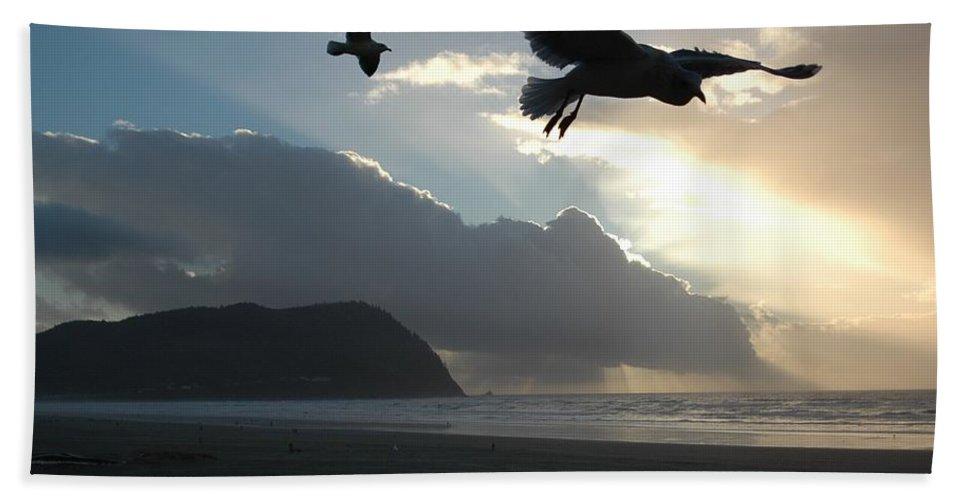 Sea Beach Towel featuring the photograph Sea Birds 2 by Sara Stevenson