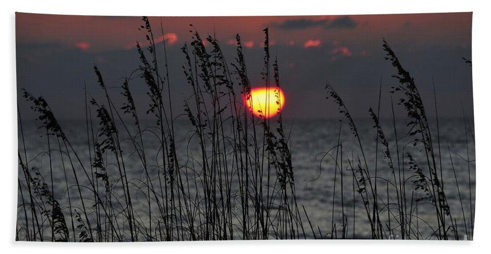 Sea Oats Beach Towel featuring the photograph Sea Oats by David Lee Thompson