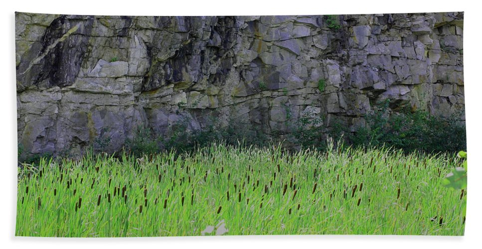 Cattails Beach Towel featuring the photograph Sea Of Cattails by Smilin Eyes Treasures