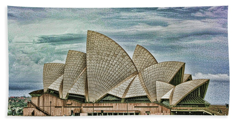 Sydney Beach Towel featuring the photograph Sea Shell Opera by Douglas Barnard