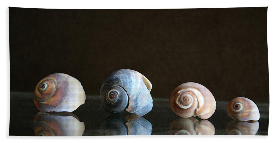 Seashells Beach Towel featuring the photograph Sea Snails by Linda Sannuti