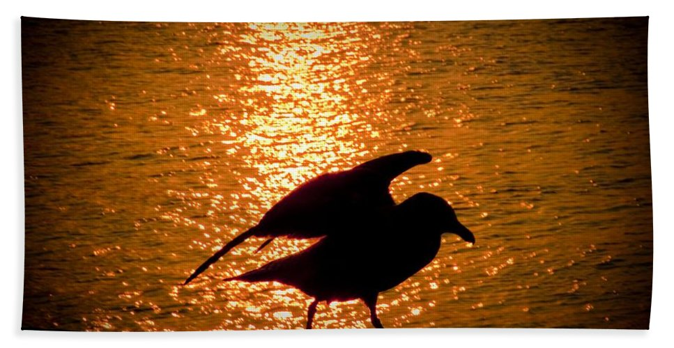 Seagull Beach Towel featuring the photograph Seagull Silhouette by Steven Natanson