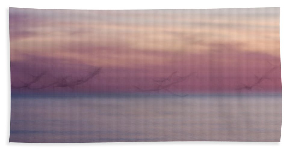 3scape Beach Towel featuring the photograph Seagulls In Motion by Adam Romanowicz