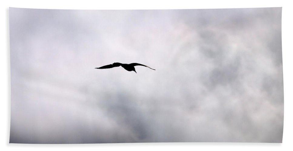 Lehtokukka Beach Towel featuring the photograph Seagull's Sky 2 by Jouko Lehto