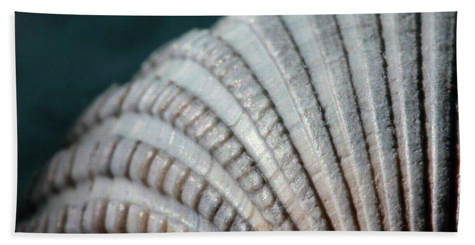 Seashell Beach Towel featuring the photograph Seashell Designs by Angela Murdock