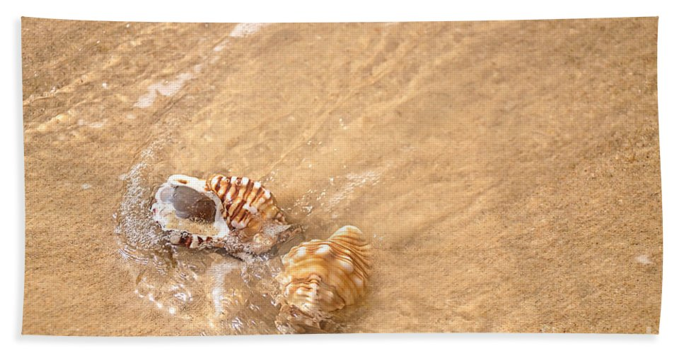 Photography Beach Towel featuring the photograph Seashell Turbulence by Kaye Menner