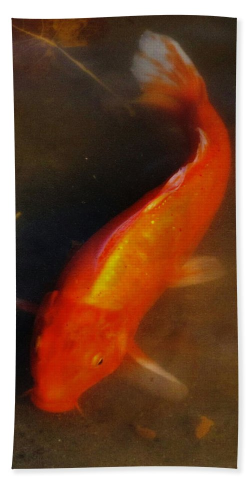 Koi Beach Towel featuring the photograph Secrets Of The Wild Koi 5 by September Stone