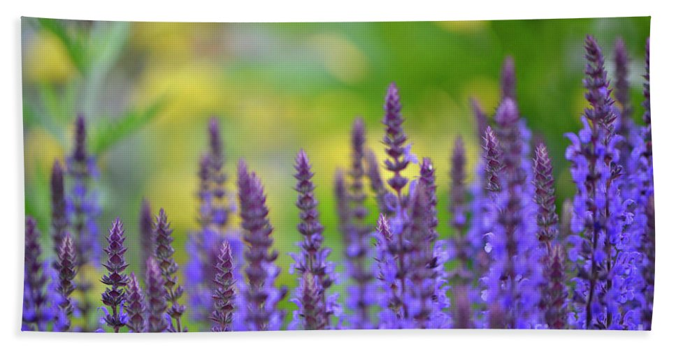 Purple Beach Towel featuring the photograph Seeing Purple by Traci Cottingham