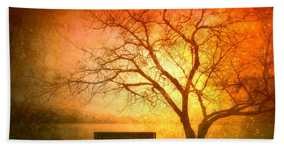 Bench Beach Towel featuring the photograph Seeking Shelter by Tara Turner