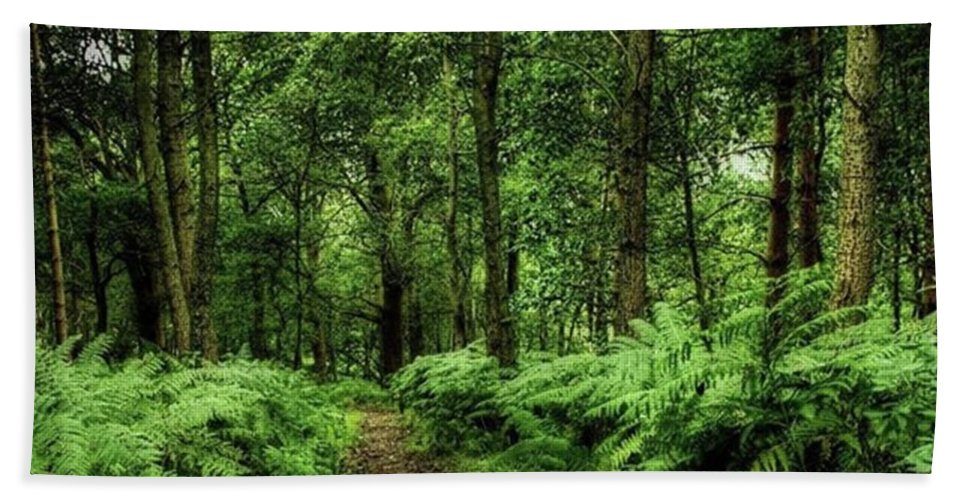 Nature Beach Towel featuring the photograph Seeswood, Nuneaton by John Edwards