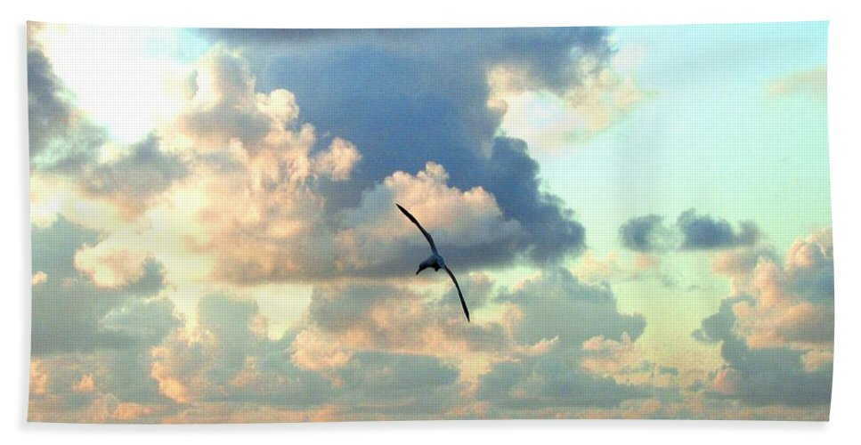Sunset Beach Towel featuring the photograph Serene Sunset by Will Borden