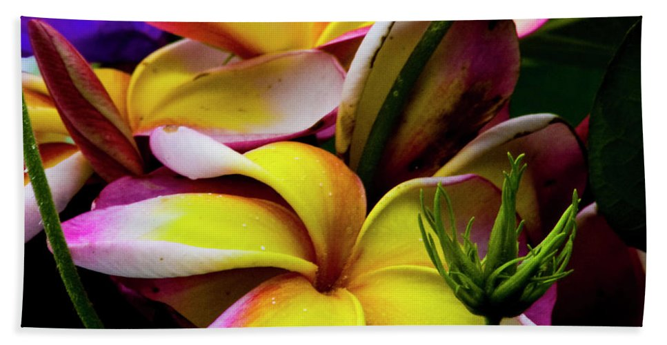 Flower Beach Towel featuring the photograph Serenity by Betsy Knapp