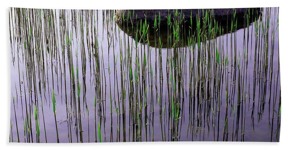 Art Beach Towel featuring the photograph Serenity by Konstantin Dikovsky