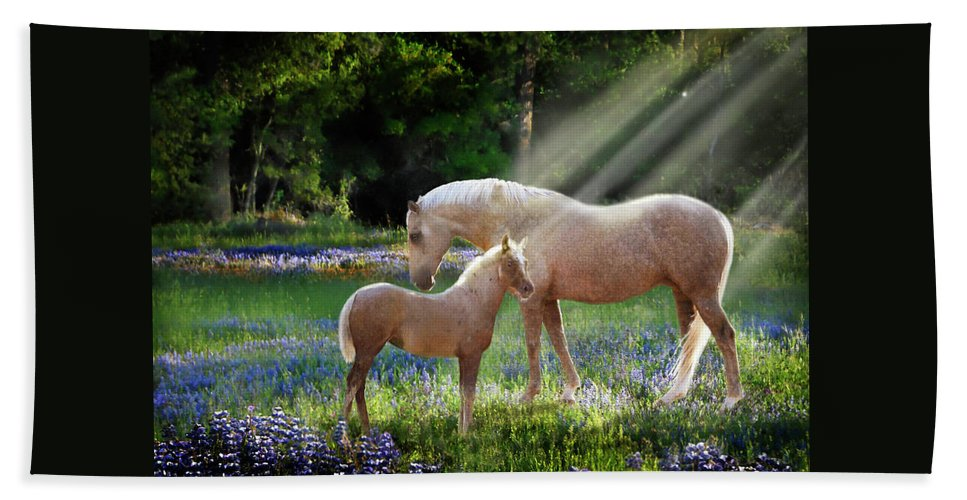 Horse Photography Beach Towel featuring the photograph Serenity by Melinda Hughes-Berland