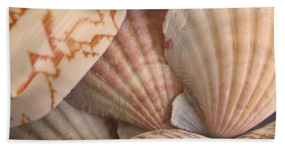 Shells Beach Towel featuring the photograph Shells by Natalie Bollinger