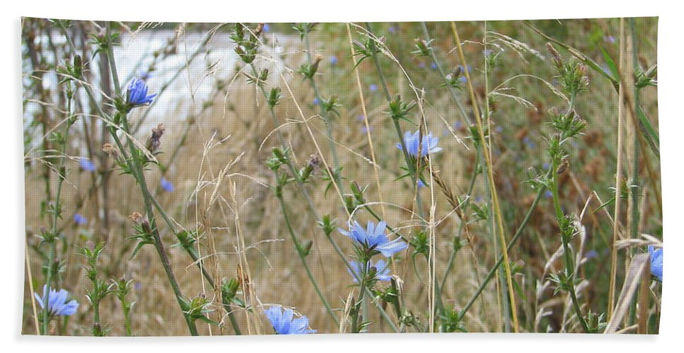 Flower Beach Towel featuring the photograph Shore Flowers by Kelly Mezzapelle