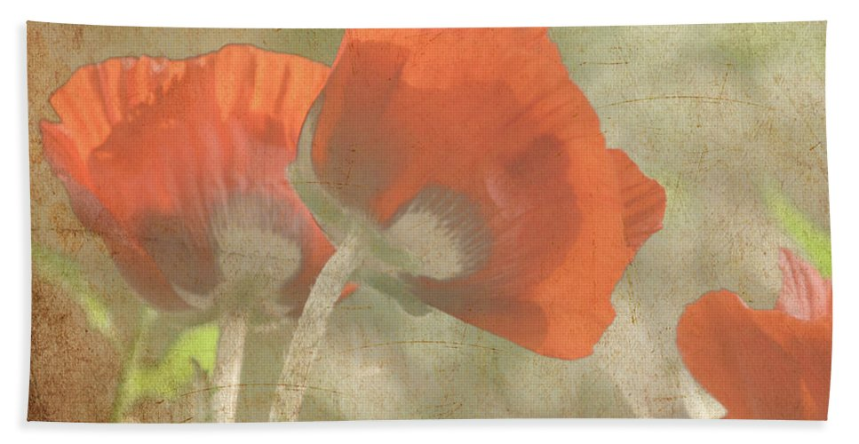 Poppy Beach Towel featuring the photograph Silent Dancers by Traci Cottingham
