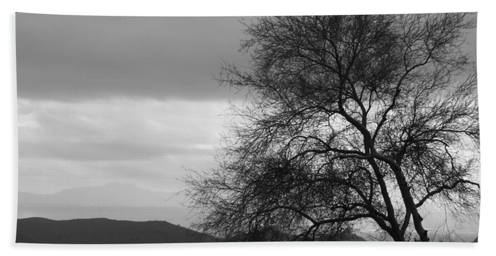 Tree Beach Towel featuring the photograph Silhouette by Lauri Novak