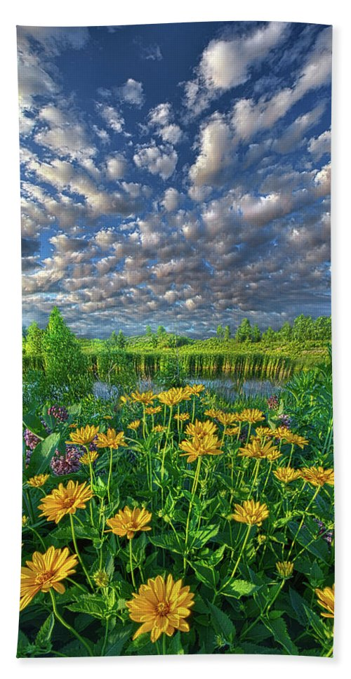 Summer Beach Towel featuring the photograph Sing For The Day by Phil Koch