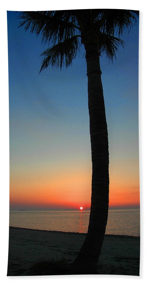 Photography Beach Towel featuring the photograph Single Palm And Sunset by Susanne Van Hulst