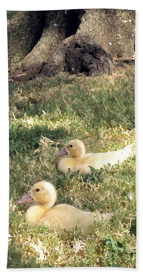 Duck Beach Towel featuring the photograph Sitting Ducks by Angelina Vick
