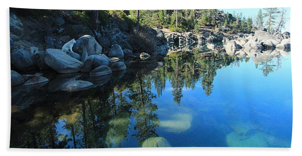 Lake Tahoe Beach Towel featuring the photograph Sitting In Awe Of Her Surroundings by Sean Sarsfield