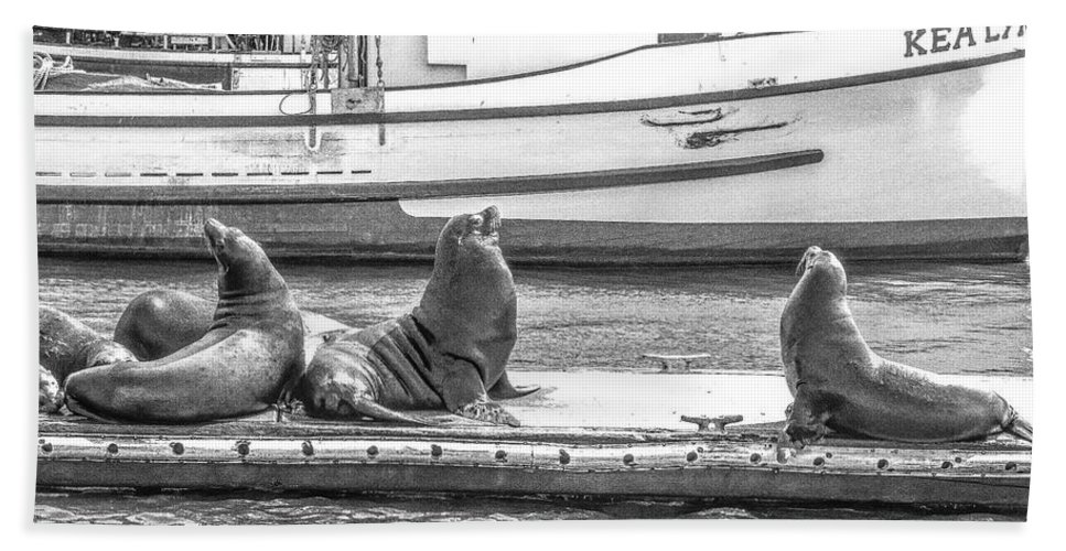 Coloney Beach Towel featuring the photograph Sitting On The Dock Of The Bay by Jeremy Rickman