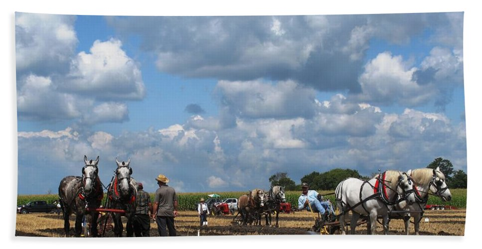 Horse Beach Towel featuring the photograph Six Horses by Ian MacDonald