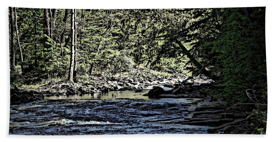 Landscape Beach Sheet featuring the photograph Six Mile Creek Ithaca Ny by David Lane