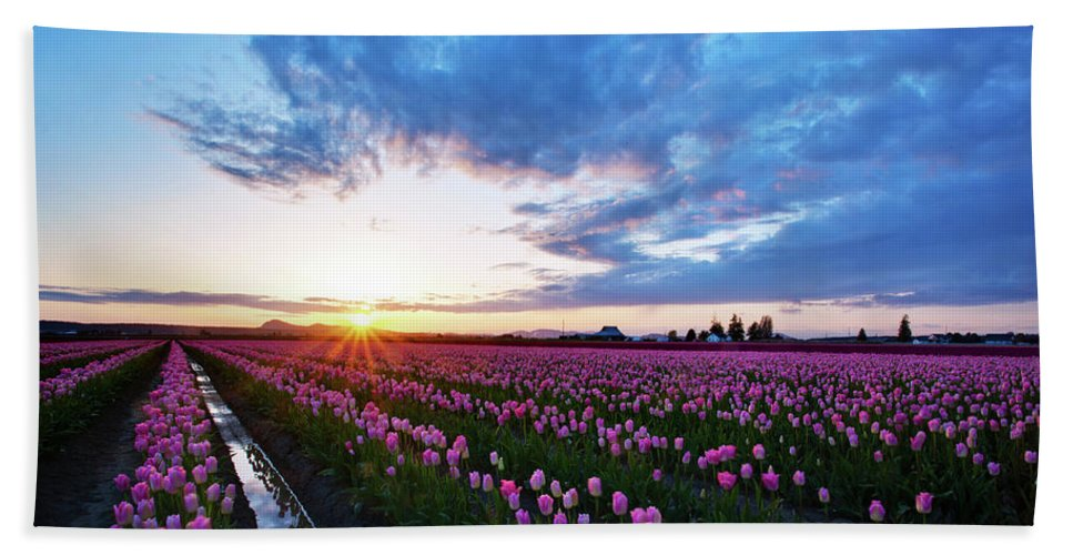 Skagit Beach Towel featuring the photograph Skagit Floral Sunset by Mike Reid