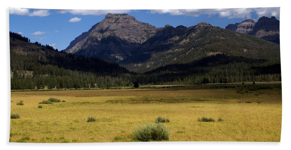 Yellowstone National Park Beach Towel featuring the photograph Slough Cree Vista by Marty Koch