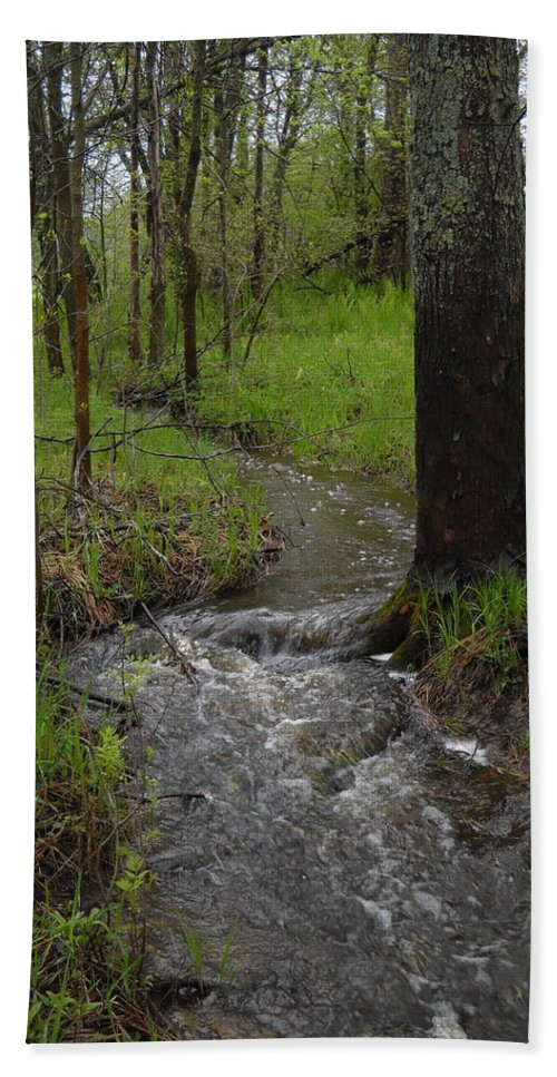 Stream Beach Towel featuring the photograph Small Stream In The Woods by Kent Lorentzen