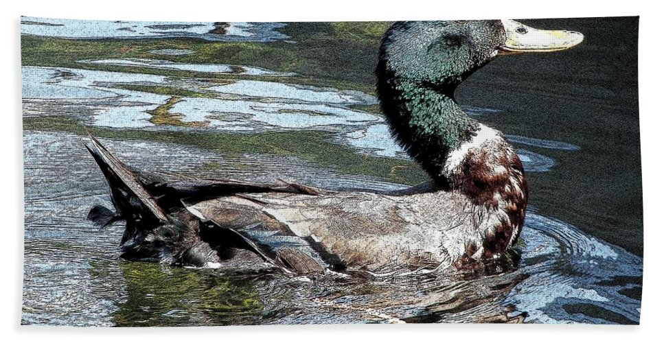 Ducks Beach Towel featuring the photograph Smiling Duck by Rose Santuci-Sofranko