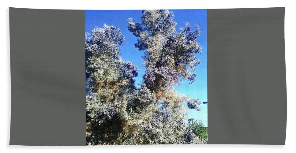 Garden Beach Towel featuring the photograph Smoke Tree In Bloom With Blue Purple Flowers by Jay Milo