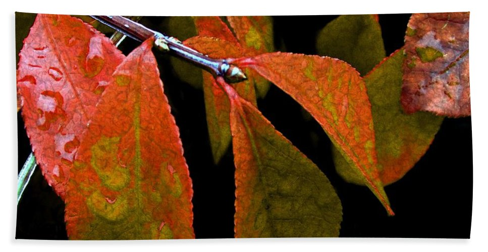Autumn Beach Towel featuring the digital art Snippet Of Fall by RC DeWinter