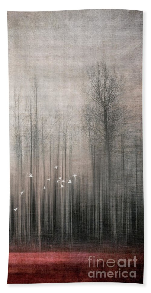 Snow Bunting Beach Sheet featuring the photograph Snow Birds by Priska Wettstein