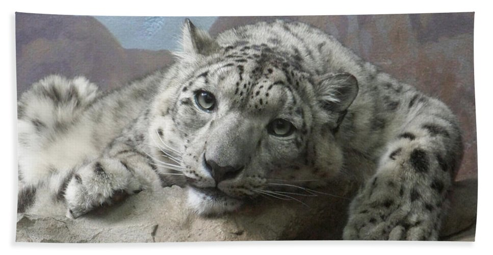 Snow Leopards Beach Towel featuring the photograph Snow Leopard Relaxing by Ernie Echols