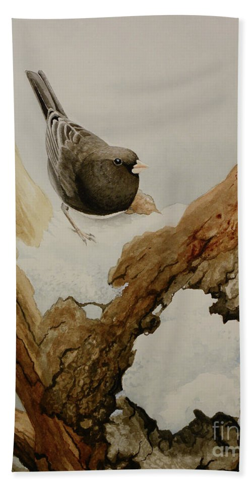 Junco Beach Towel featuring the painting Dark-eyed Junco by Charles Owens