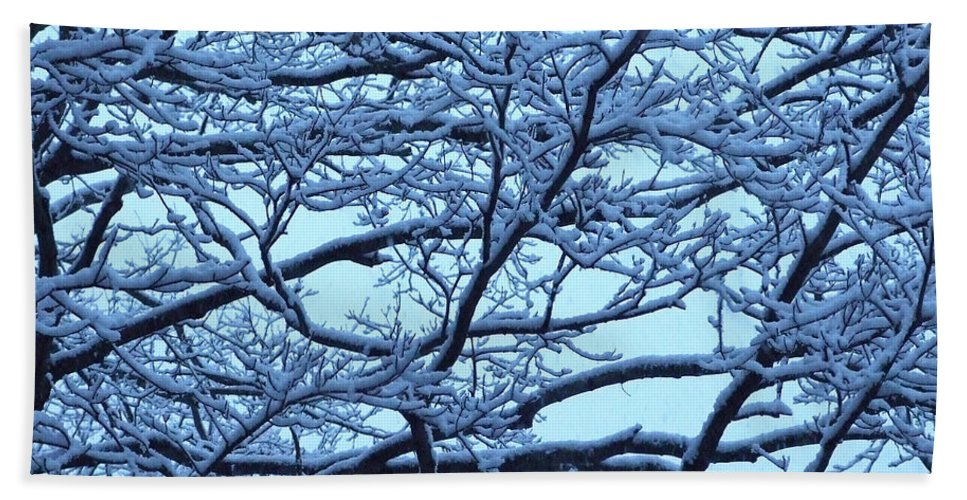 Artoffoxvox Beach Towel featuring the photograph Snowy Branches Landscape Photograph by Kristen Fox